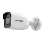 IP Camera DS-2CD2021G1-I